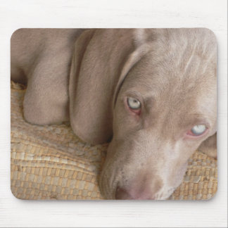 Sleeping Weimaraner Mouse Pad