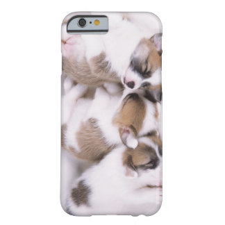 Sleeping welsh corgi puppies barely there iPhone 6 case