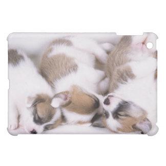 Sleeping welsh corgi puppies iPad mini cover
