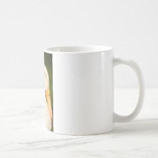 Sleeping White Ducd Coffee Mug