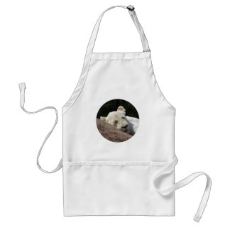 Sleeping White Lioness Adult Apron