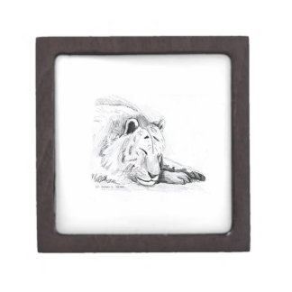 Sleeping White Tiger head and paws Pencil Drawing Gift Box