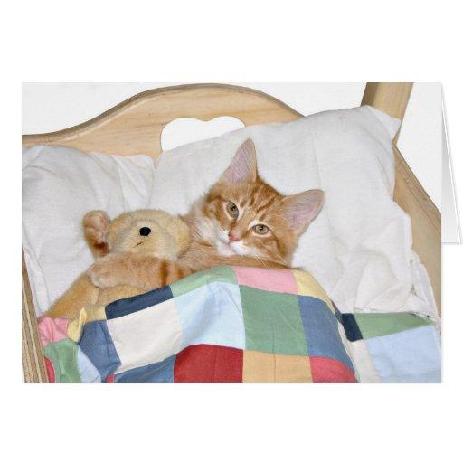 Sleeping with Teddy Card
