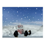 Sleeping with the Penguins Postcard