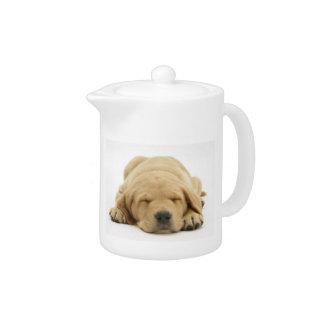 Sleeping Yellow Labrador Retriever Teapot
