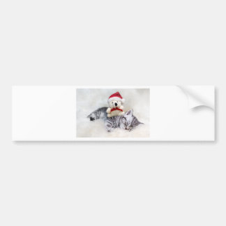 Sleeping young tabby cat with christmas bear bumper sticker