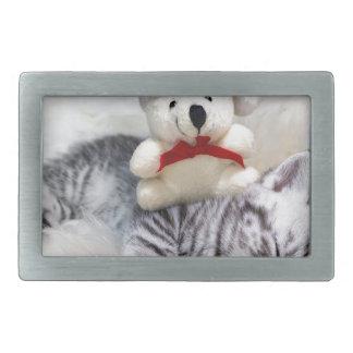 Sleeping young tabby cat with christmas bear rectangular belt buckle