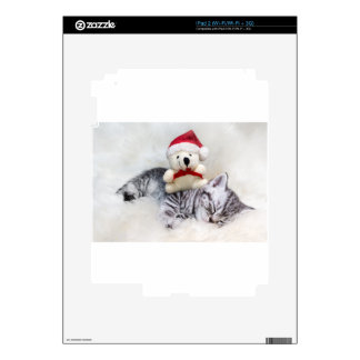 Sleeping young tabby cat with christmas bear skin for iPad 2