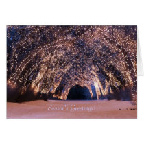 blue christmas, holiday, wolves, aurora, christmas lights, lit trees, snow, Card with custom graphic design