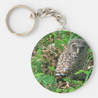 Sleepy Baby Barred Owl Basic Round Button Keychain
