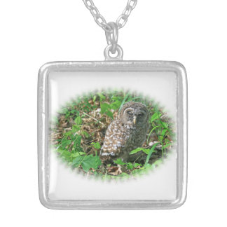 Sleepy Baby Barred Owl Silver Plated Necklace
