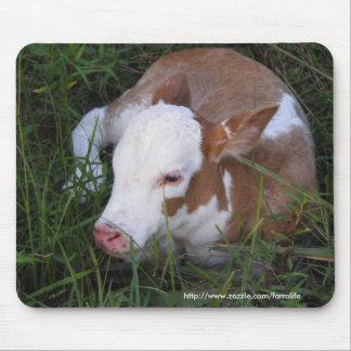 Sleepy Baby calf mousepad