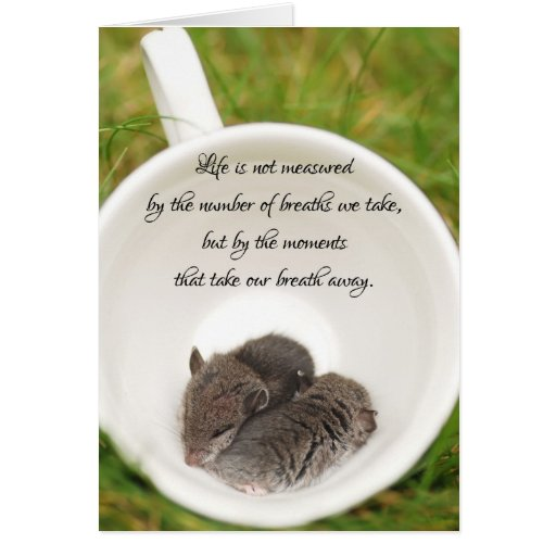 Sleepy Baby Mice with Quote Card