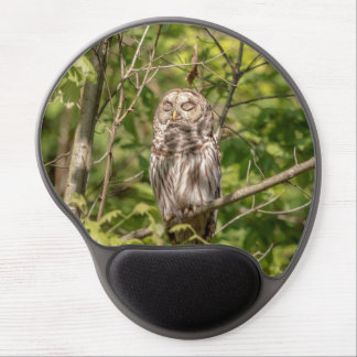 Sleepy Barred Owl Gel Mouse Pad