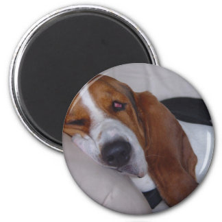 Sleepy Basset Hound Magnet