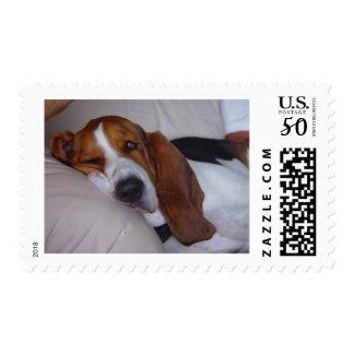 Sleepy Basset Hound Postage