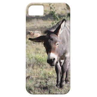 Sleepy Burro iPhone SE/5/5s Case