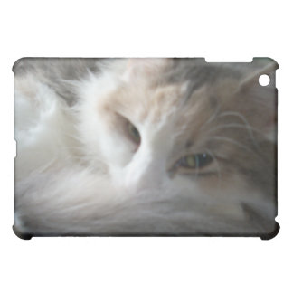 Sleepy Calico Cat iPad case
