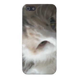 Sleepy Calico Cat iPhone 4 case