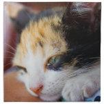 Sleepy Calico Kitten Printed Napkin