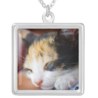 Sleepy Calico Kitten Silver Plated Necklace