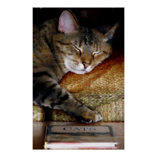 Sleepy Cat Book Painting Posters