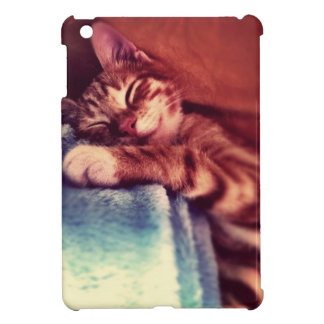 Sleepy cat case for the iPad mini