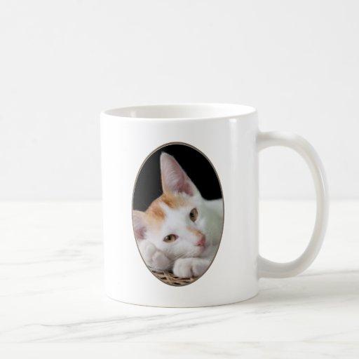 Sleepy cat classic white coffee mug