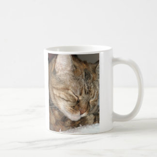 Sleepy Cat Mugs