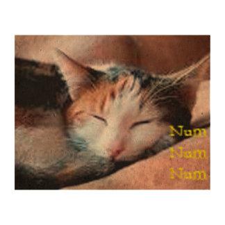 Sleepy Cat Cork Paper