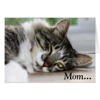Sleepy Cat Saturday Mother's Day Card