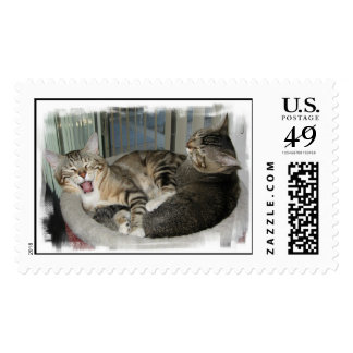Sleepy Cats Postage Stamps