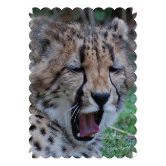 Sleepy Cheetah Cub Card