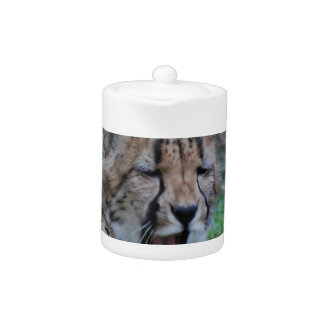 Sleepy Cheetah Cub Teapot