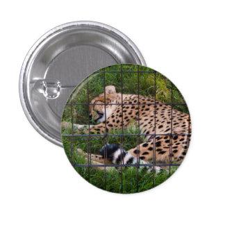Sleepy Cheetah Pinback Button