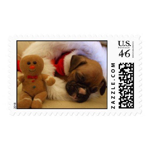 Sleepy Christmas boxer puppy postage