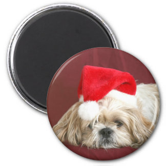 Sleepy Christmas Shih Tzu Magnet