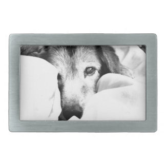 sleepy cuddle dog on bed black white gray rectangular belt buckle