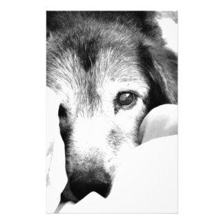 sleepy cuddle dog on bed black white stationery