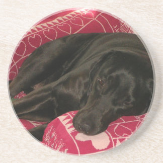 Sleepy Dog Coaster