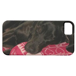Sleepy Dog iPhone 5 Case
