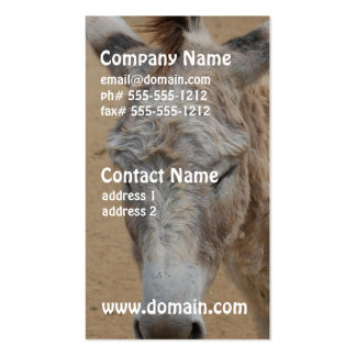 Sleepy Donkey Business Card