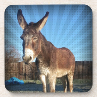 Sleepy Donkey Drink Coaster