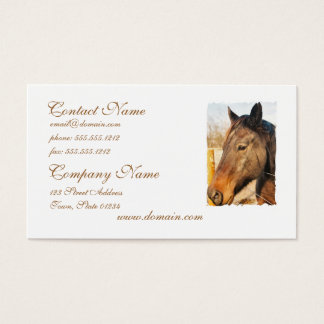 Sleepy Draft Horse Business Cards