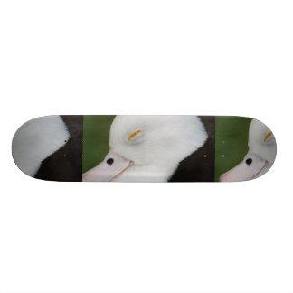 Sleepy Duck Skateboard