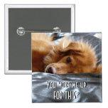 Sleepy Eyed Dog Pinback Buttons