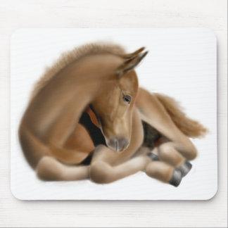 Sleepy Foal Mousepad