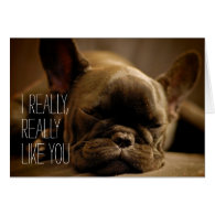Sleepy French Bulldog Card