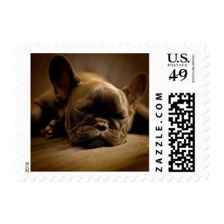 Sleepy French Bulldog Stamp