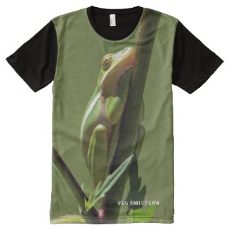 Sleepy Frog Shirt